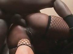 Black asses